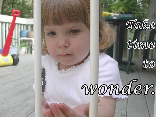 Image of a girl closely examining a caterpillar crawling on a white gate.  Image has the caption 'Take time to Wonder'